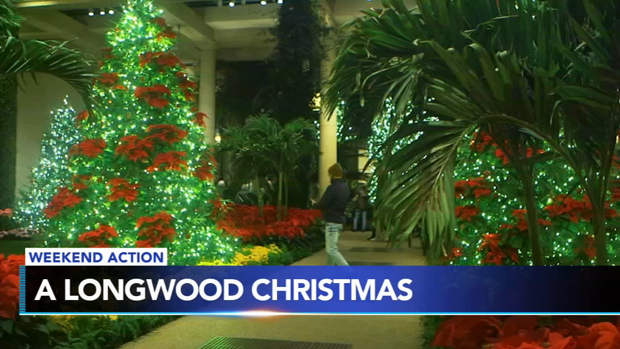 Longwood Gardens has Christmas lights for your viewing pleasure. Plus, the Flyers and Sixers are in action and more.