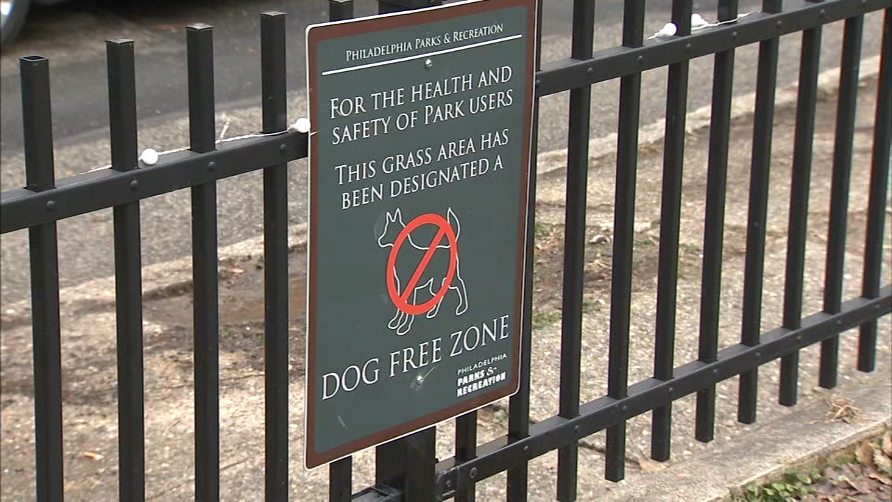 Man dies after being punched in South Philadelphia park: Bob Brooks reports on Action News at 5 p.m., January 6, 2019