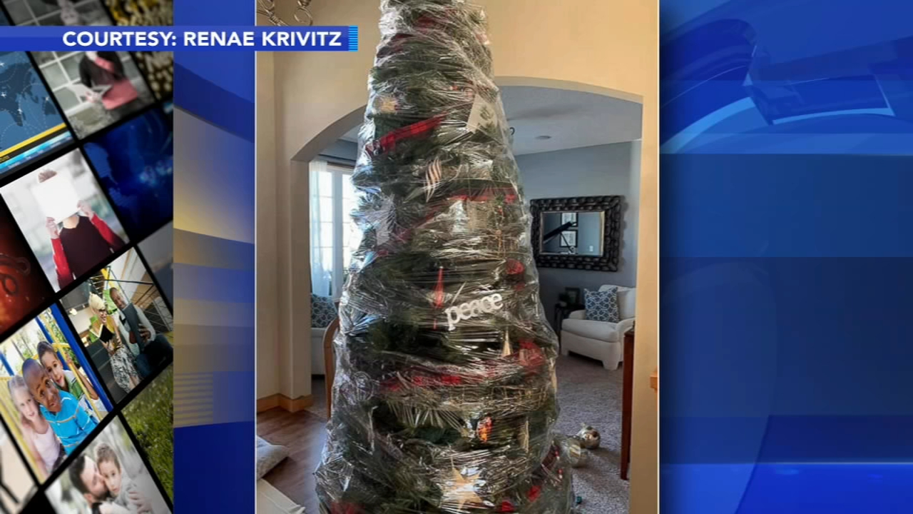 Minnesota womans Christmas tree hack goes viral. Gray Hall reports during Action News at 6 a.m. on January 12, 2019.
