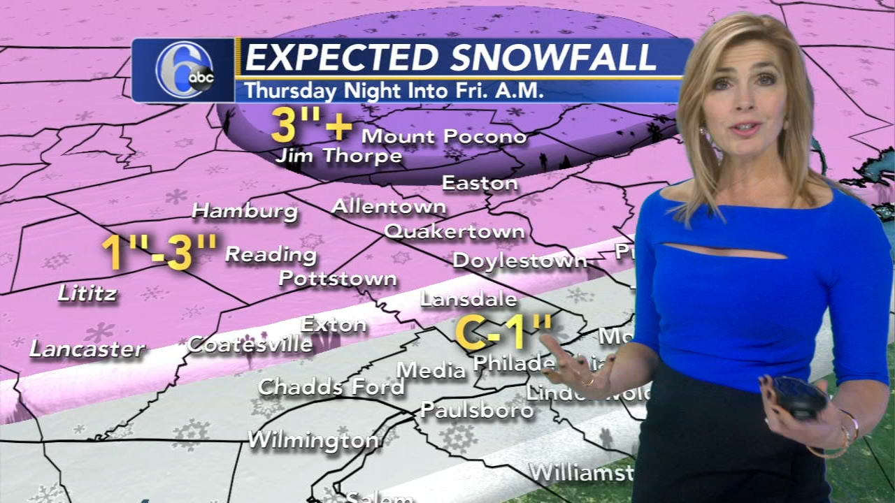 Karen Rogers with AccuWeather during Action News at noon on January 16, 2019.