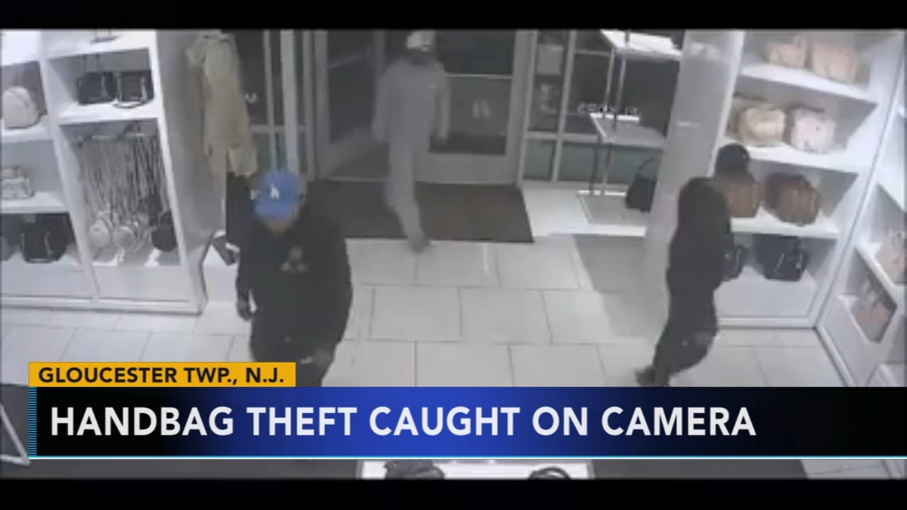 Handbag theft caught on camera in Gloucester County, N.J. Sarah Bloomquist reports during Action News at 12:30 p.m. on January 17, 2019.