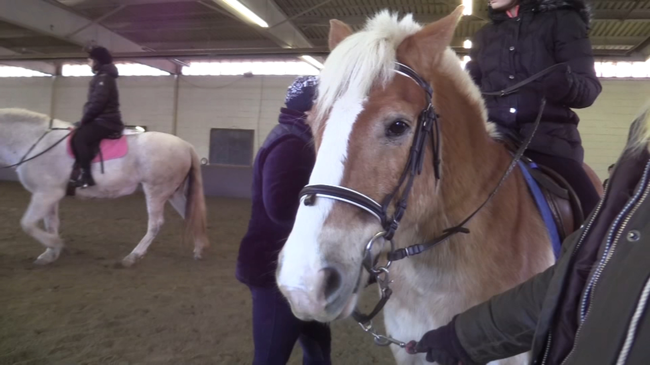 Local equestrian center celebrates decades of enabling all riders: Trish Hartman reports on Action News at 5 p.m., January 20, 2019