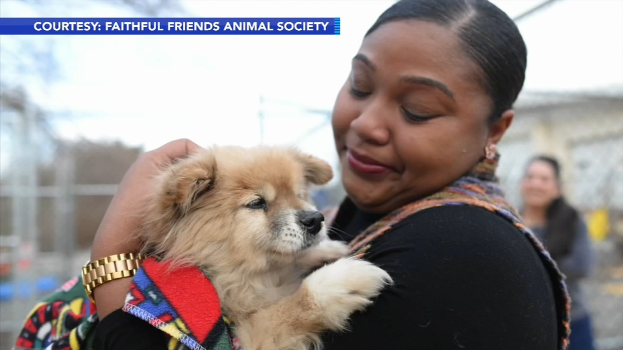 Its a heartwarming story that took a dog all the way from Virginia to Wilmington, and back home again.