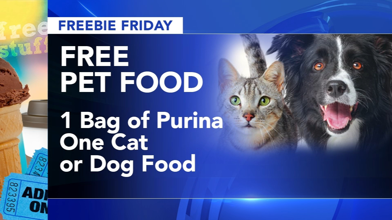 Freebie Friday - Sharrie Williams has all your freebies this Friday during Action News at 4:30pm on January 25,2019.
