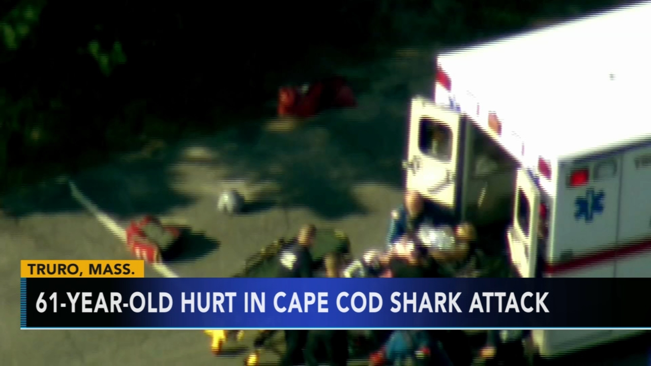 Man injured in Cape Cod shark attack. Tamala Edwards reports during Action News Mornings on August 16, 2018.