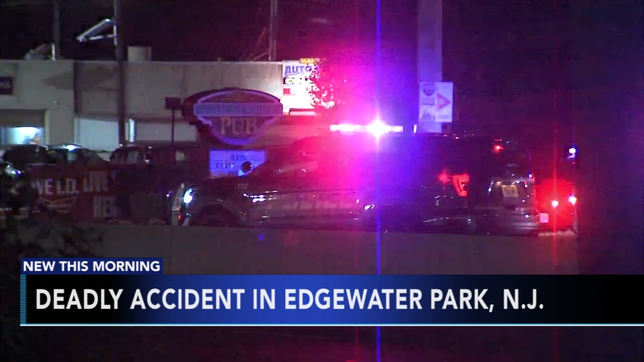 Pedestrian struck and killed by car in Edgewater Park. Gray Hall reports during Action News at 6 a.m. on August 19, 2018.