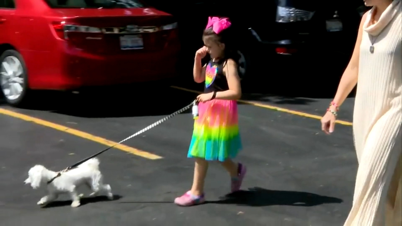 Police called on Illinois 8-year-old girl walking her dog alone. Alicia Vitarelli reports during Action News at 4 p.m. on August 24, 2018.