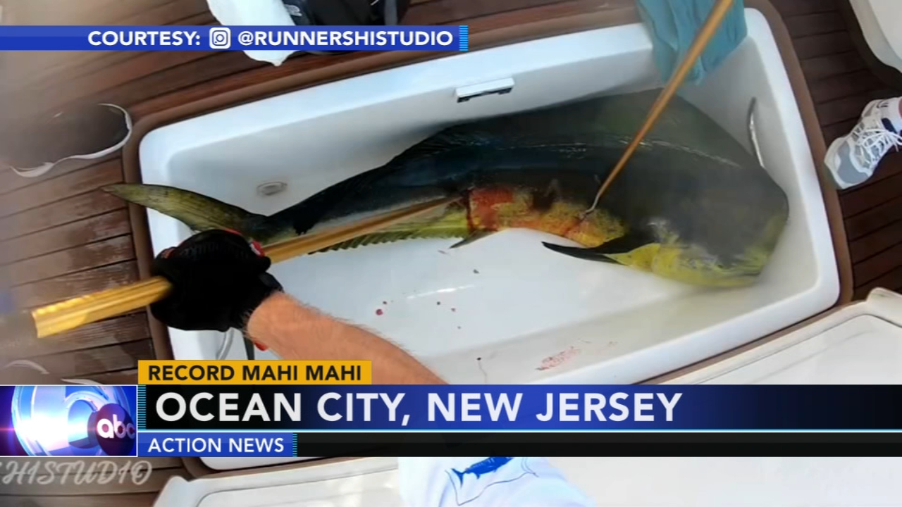 Teen makes a big catch in Ocean City. Matt ODonnell reports during Action News Mornings on September 4, 2018.