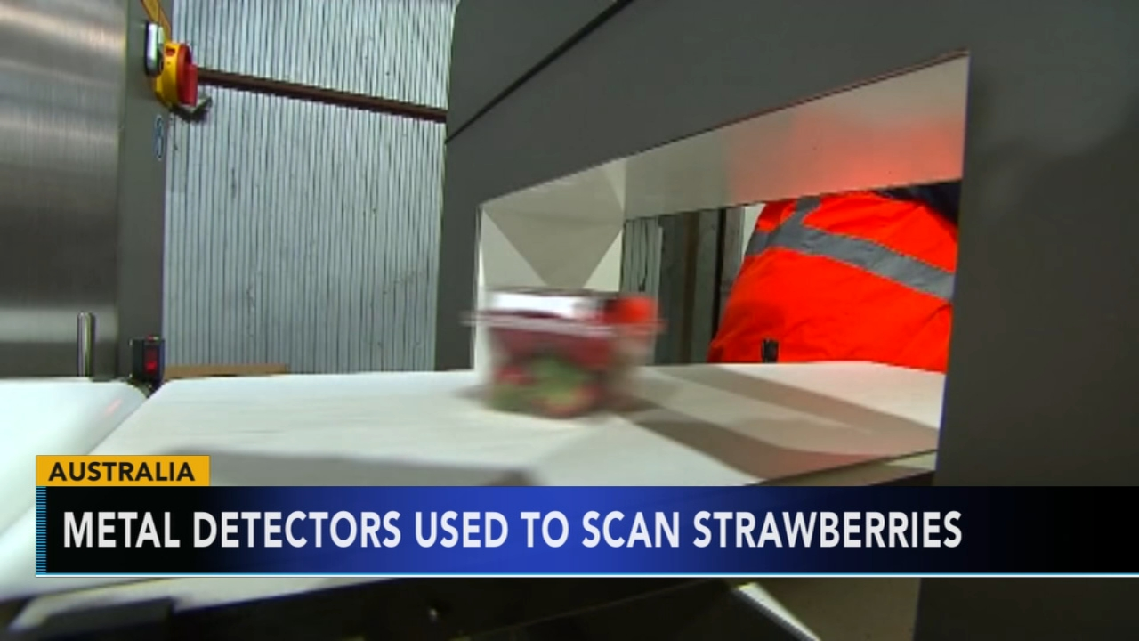 Needles and pins hidden in strawberries sold in Australia. Tamala Edwards reports during Action News at 4 a.m. on September 19, 2018.