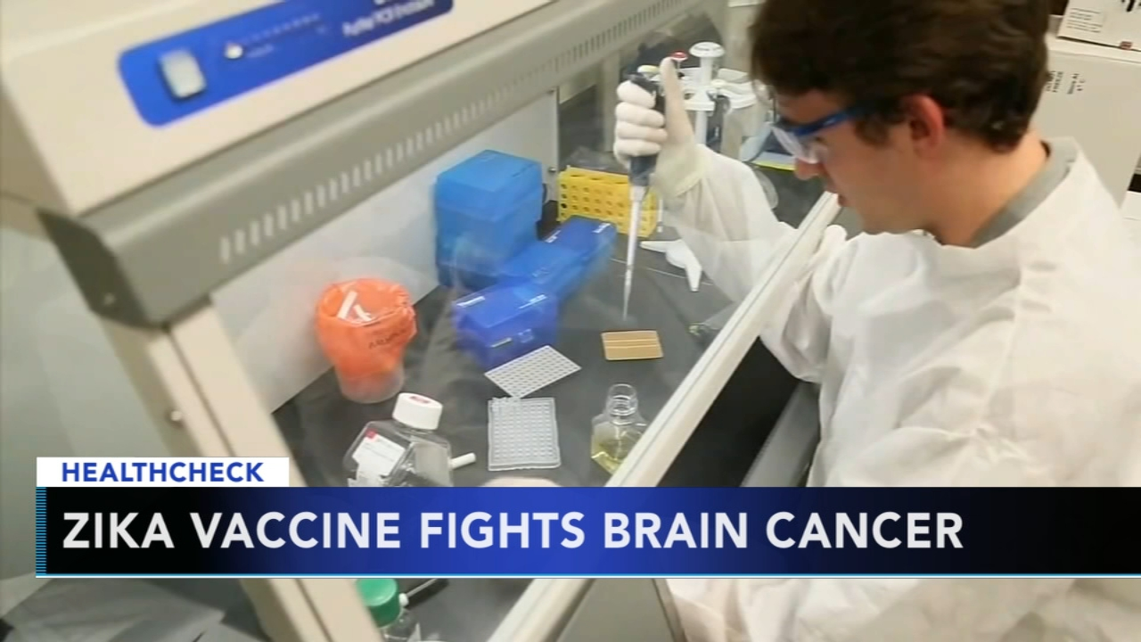 Zika virus could be key to treat brain cancer, researchers say - Ali Gorman reports during Action News at 5pm on September 19, 2018.