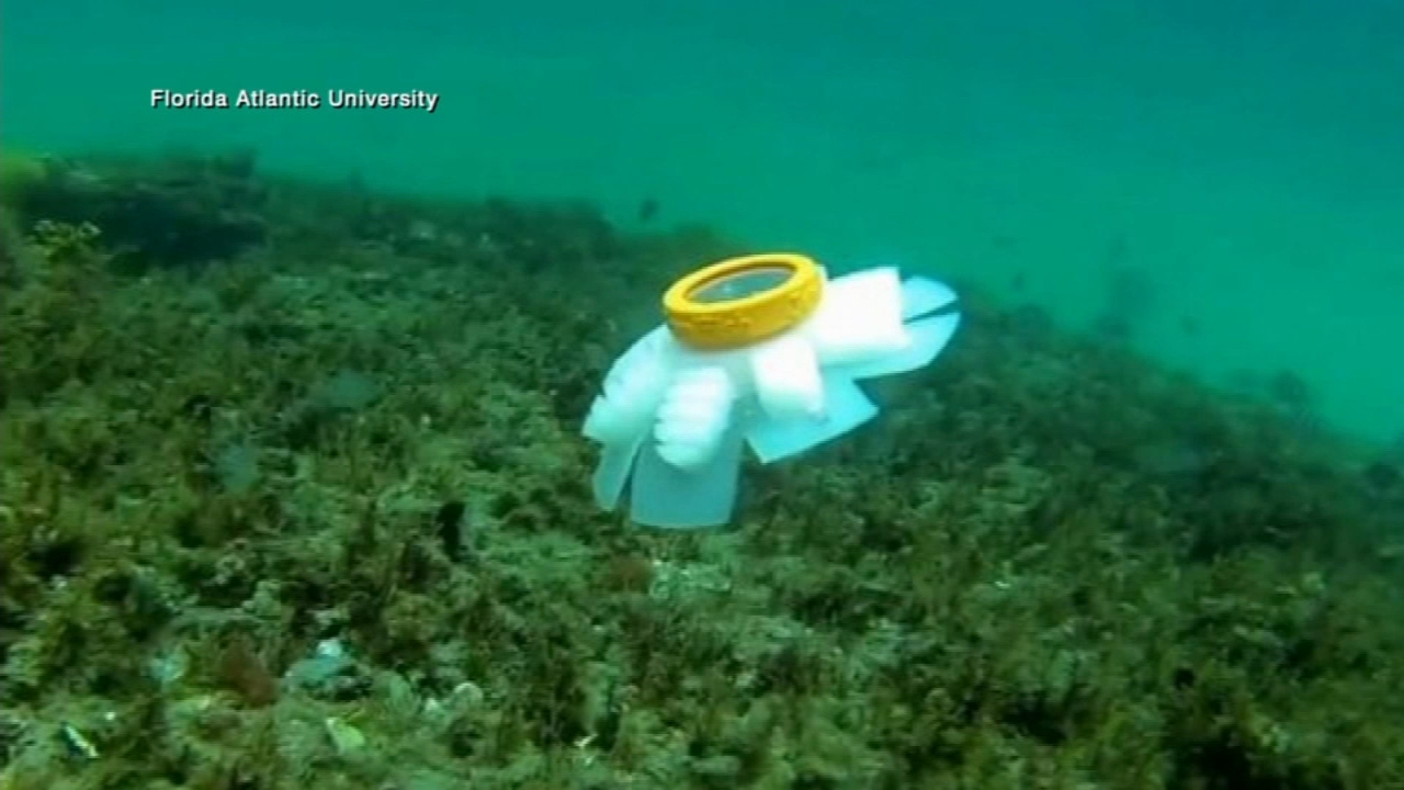 Robotic jellyfish designed to monitor delicate coral reefs. Nydia Han reports during Action News at 9 a.m. on September 23, 2018.