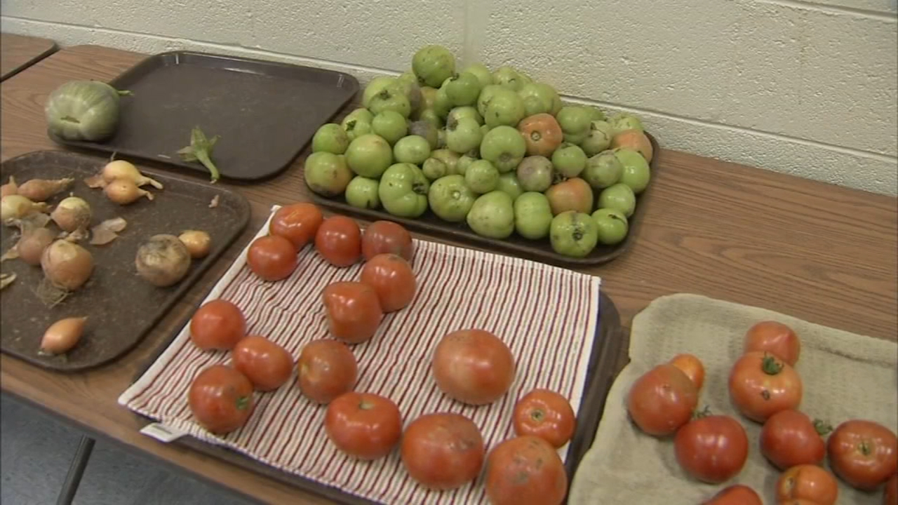 Various Bucks county residents shared their stories of how  SNAP as reported during Action News t 5 on September 26, 2018.
