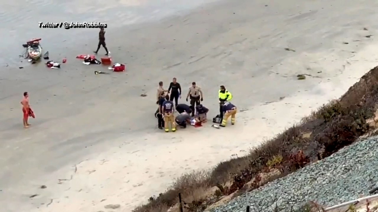13-year-old attacked by shark at Southern California beach. ABC News Mark Remillard reports during Action News at 6 a.m. on September 30, 2018.