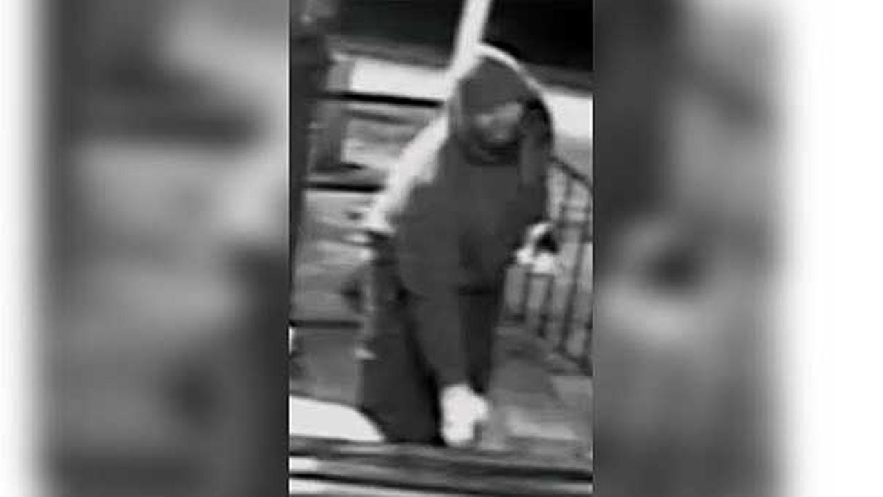 Philadelphia police are looking for a burglar who broke into a bar in the citys Juniata Park section.