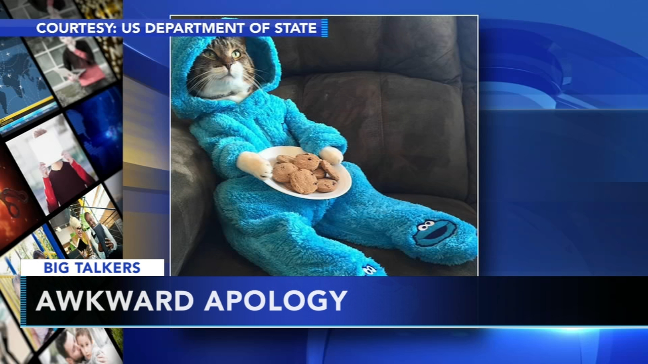 U.S. embassy accidentally sends out cat pajama party invitation. Watch the report from Action News at 4:30 p.m. on October 15, 2018.