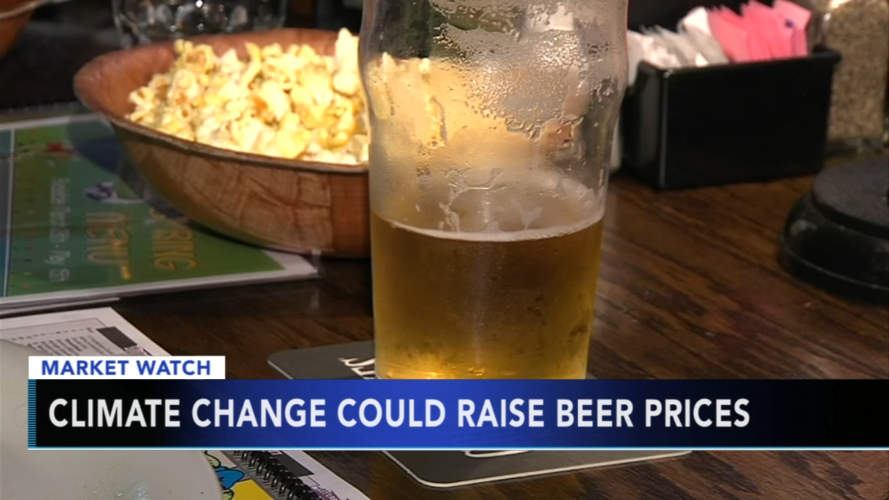 Climate change could raise beer prices. Maribel Aber reports during Action News Mornings on October 16, 2018.