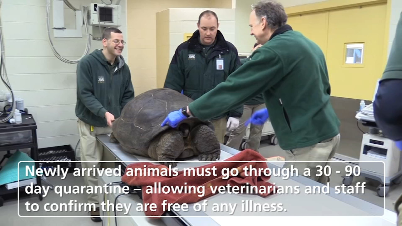 When zoo animals need a little TLC, they find it at the Philadelphia Zoo Animal Health Center.