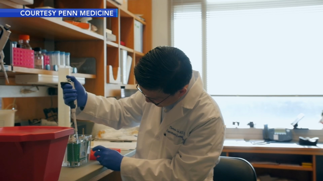 Penn Medicine using immunotherapy to battle glioblastoma - Ali Gorman reports during Action News at 5pm on October 30, 2018.