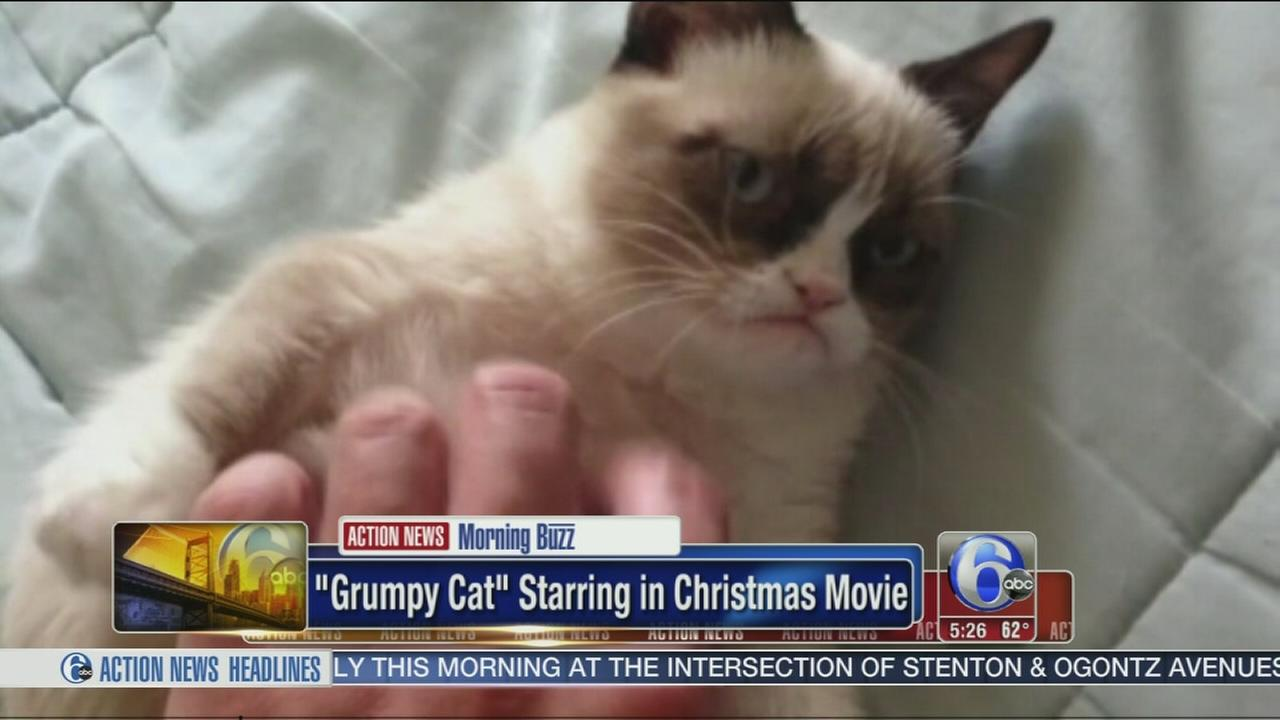 Video grumpy cat is starring in christmas movie 6abc thecheapjerseys Choice Image