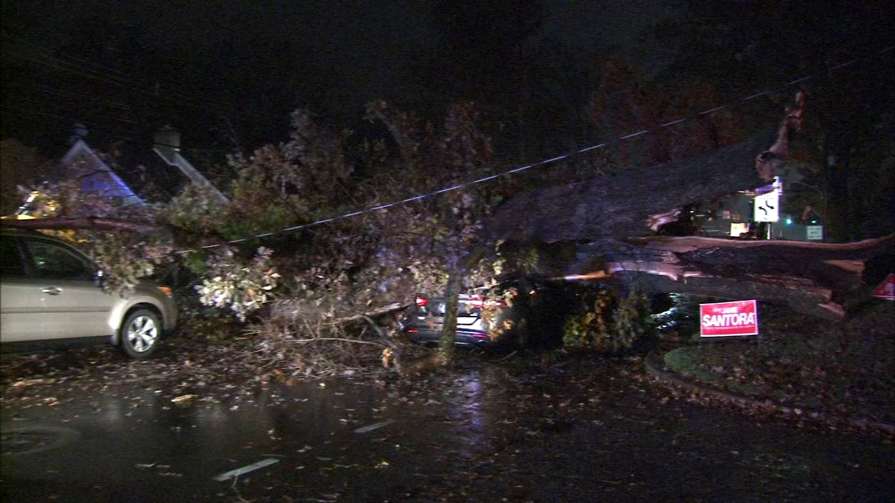 Large tree crashes down on Havertown road. Matt ODonnell reports during Action News Mornings on November 7, 2018.