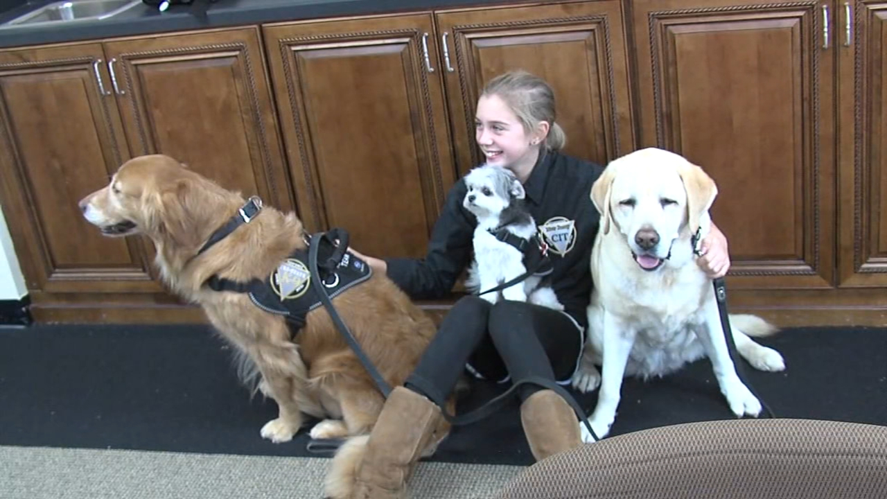 Special team of K9s depart South Jersey to bring comfort to those in California. Bob Brooks reports during Action News at 9 a.m. on November 11, 2018.