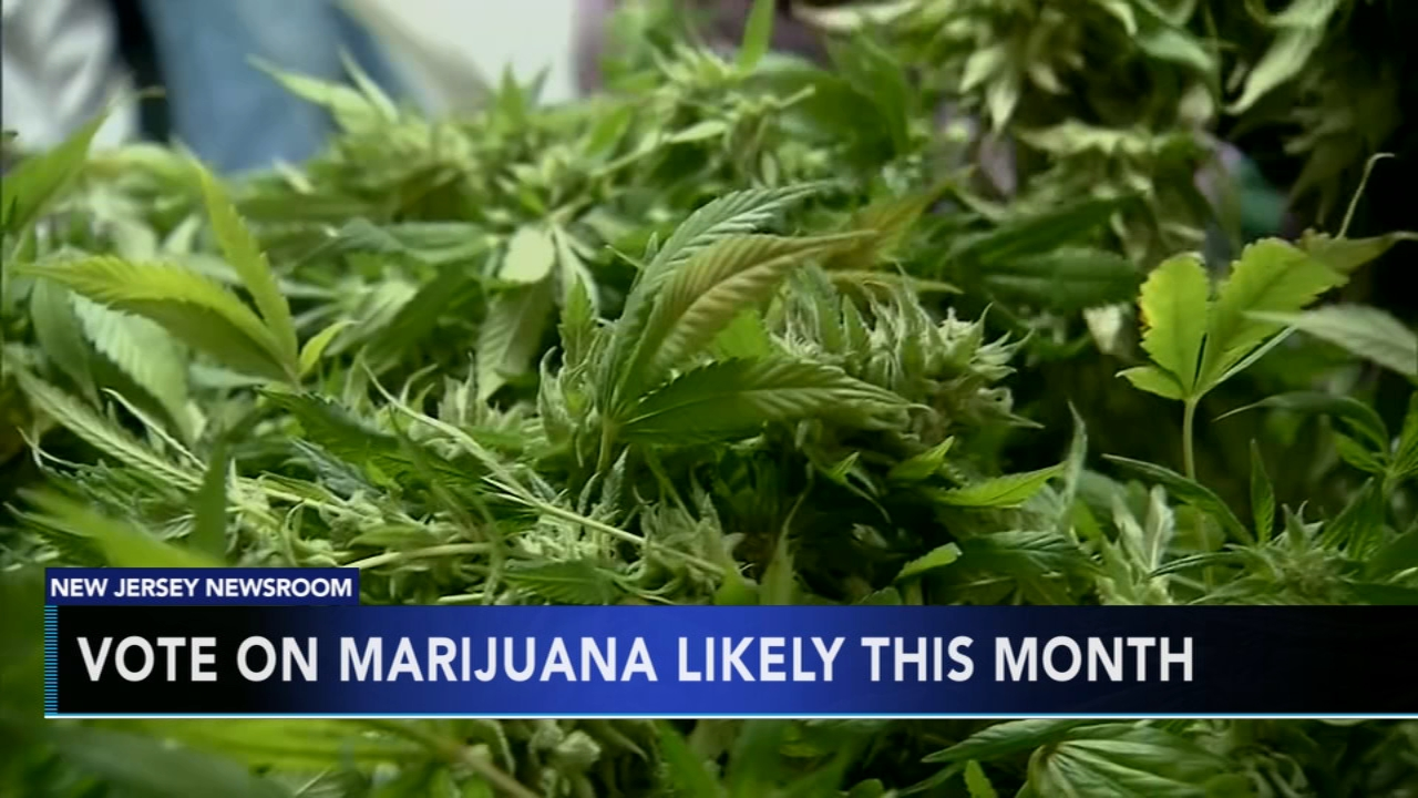 Vote on marijuana could reach committee soon, leaders say. Tamala Edwards reports during Action News Mornings on November 15, 2018.