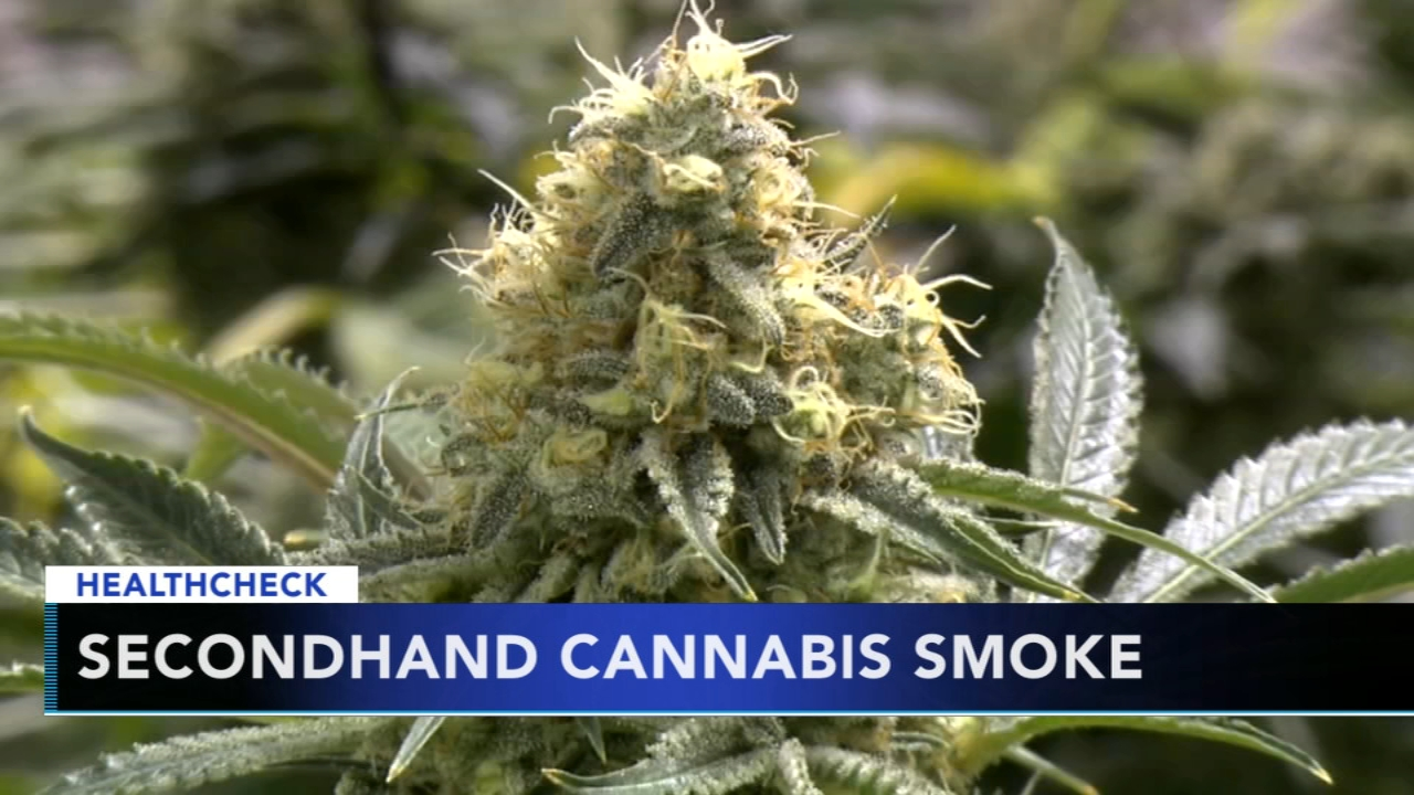 Study finds secondhand cannabis smoke can provoke allergy, worsen asthma in children. Gray Hall reports during Action News at 9 a.m. on November 25, 2018.