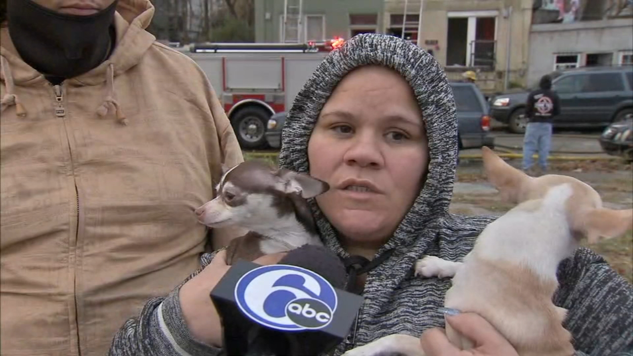 Family credits chihuahuas with saving them from fire: As seen on Action News at 4 p.m., November 26, 2018
