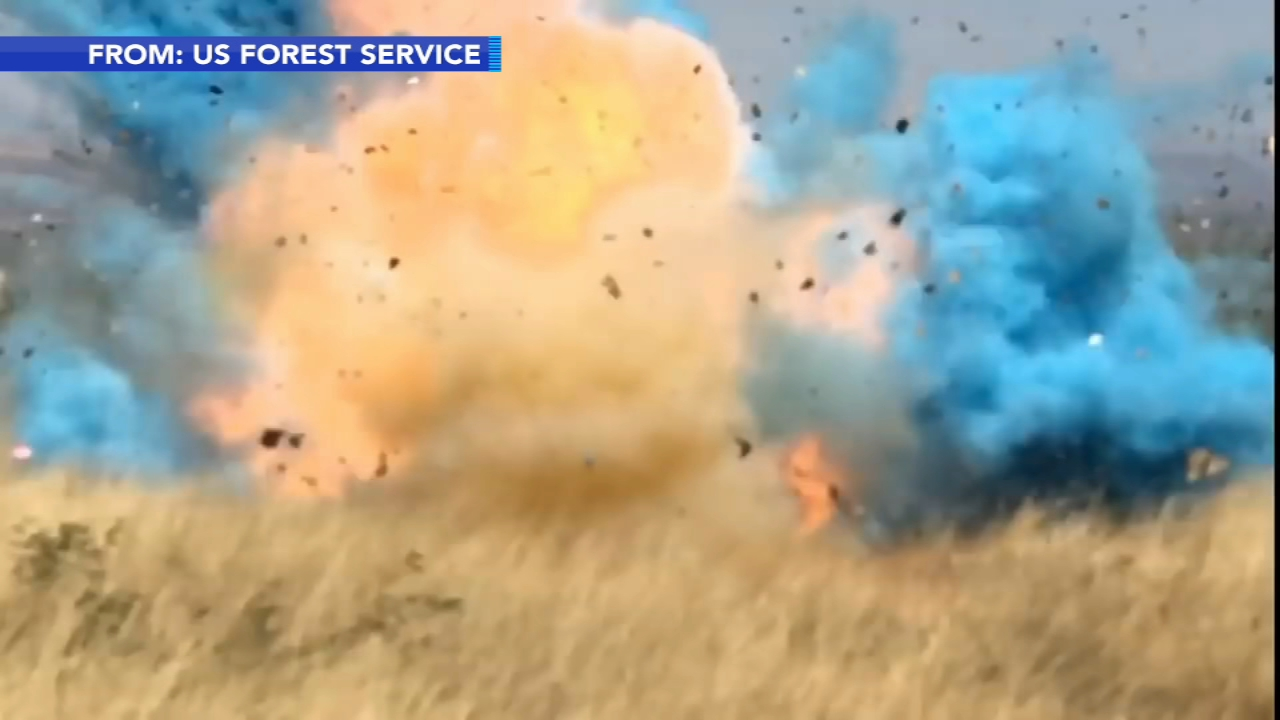 Gender reveal leads to 47,000-acre wildfire. Watch newly released video from the U.S. Forest Service of the explosive gender reveal that led to the wildfire.