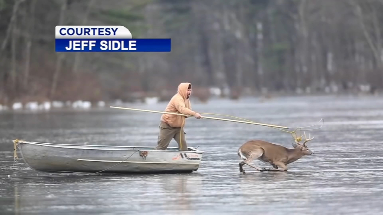 A group of hunters in northeast Pennsylvania showed a softer side over the weekend when they worked quickly to rescue an eight-point buck stuck on a frozen lake.
