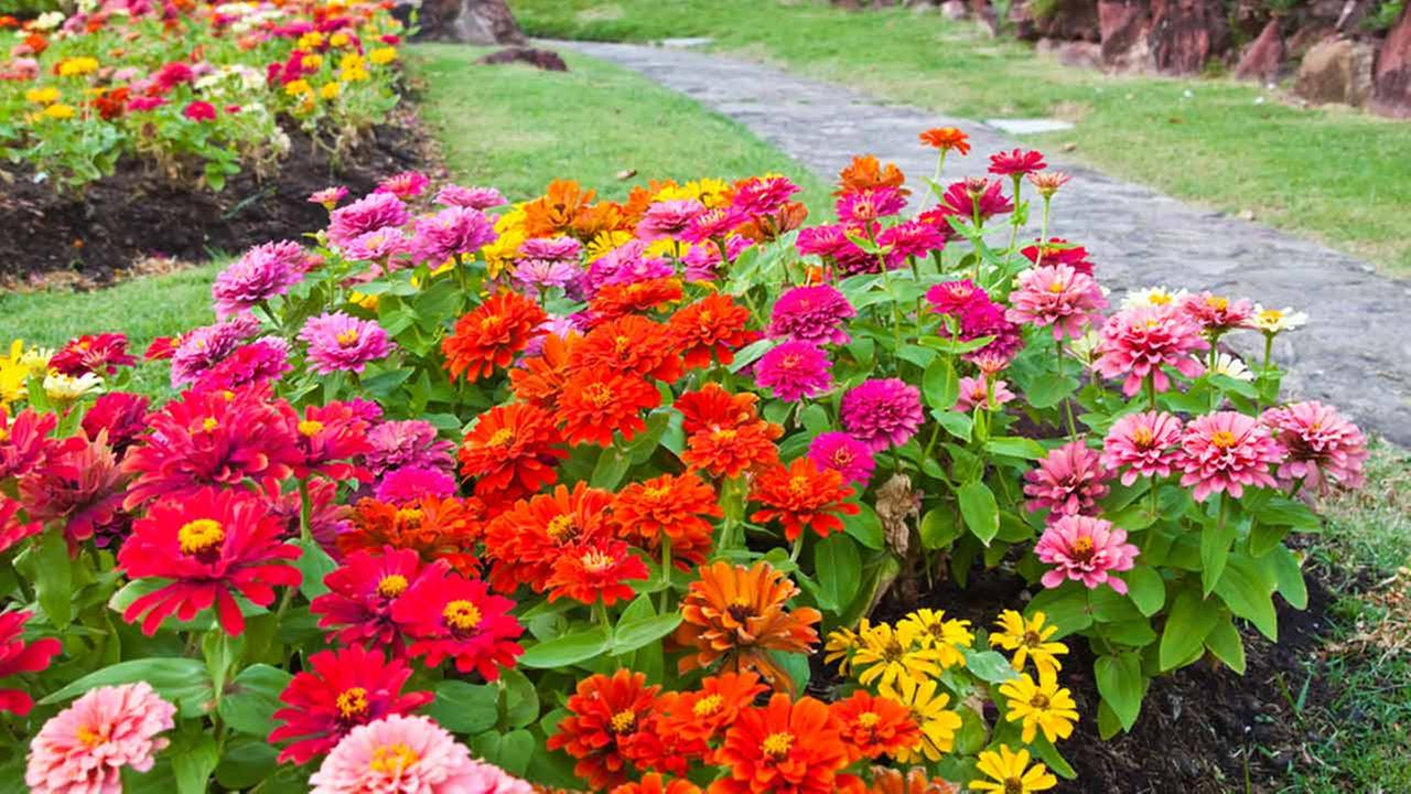 7 Ways to Jumpstart Your Garden for Spring