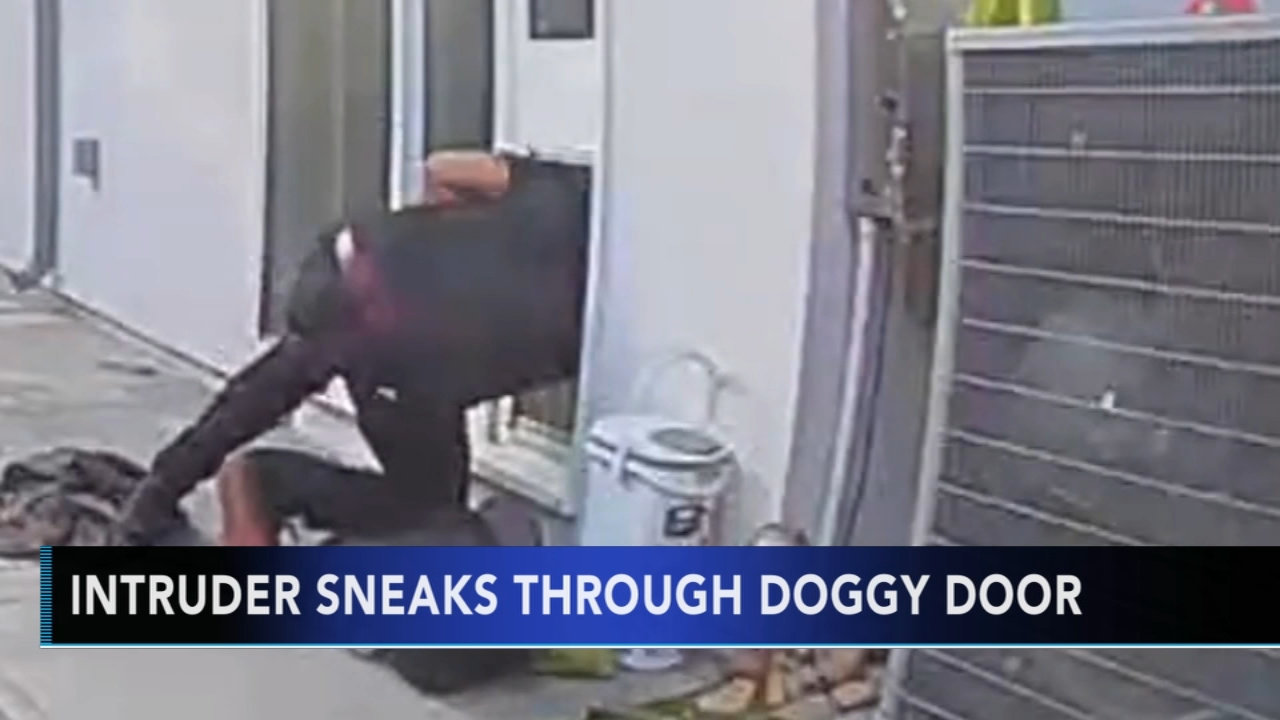 Intruder squeezes through doggie door into California home. Brian Taff reports during Action News at 4 p.m. on December 6, 2018.