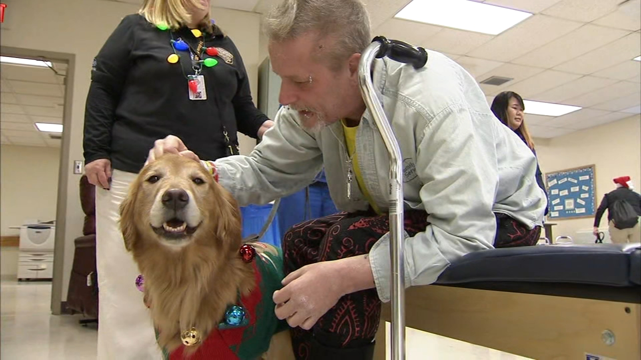 Therapy dogs and their handlers were dressed in full holiday gear as reported during Action News at 4 on December 20, 2018.