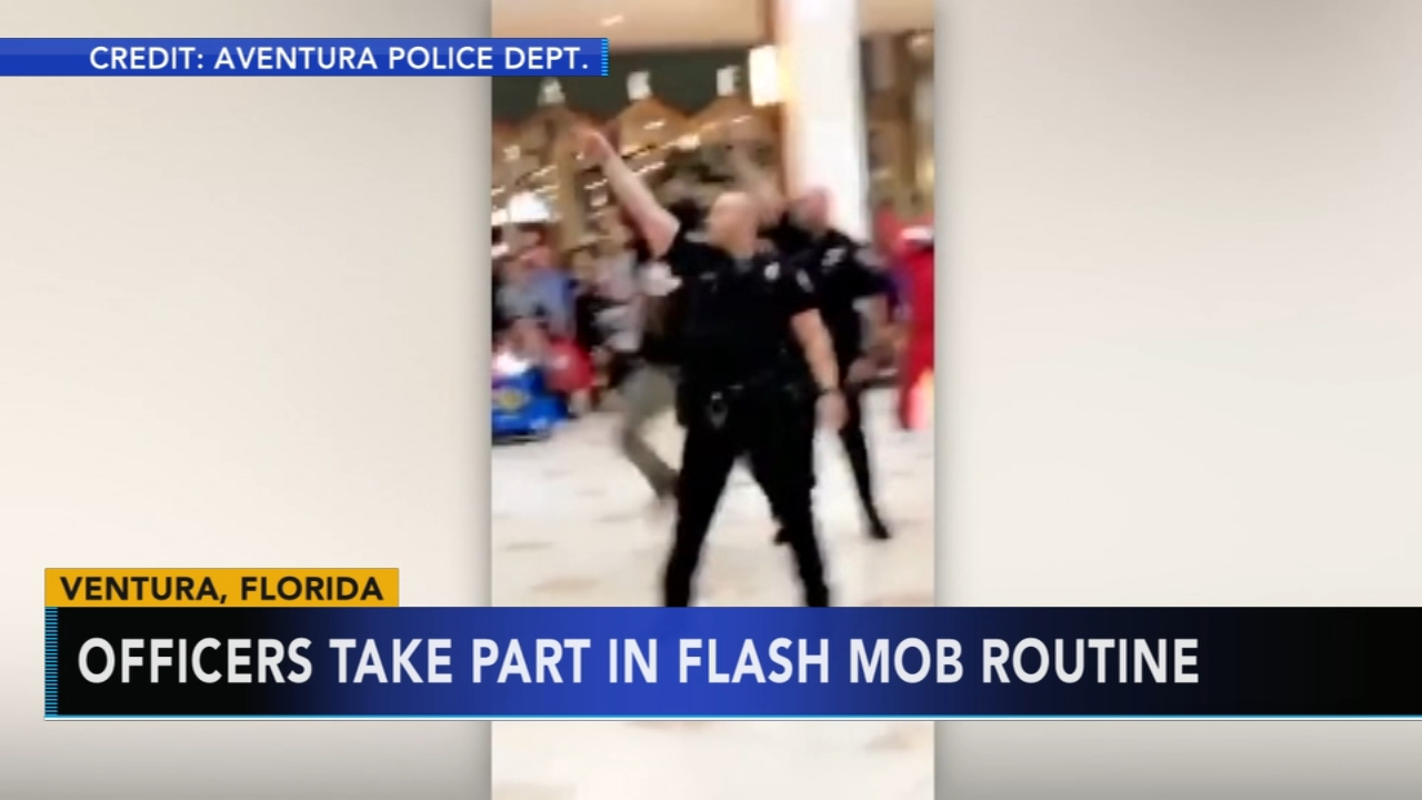 Officers join flash mob routine at Florida mall. Gray Hall reports during Action News at 9 a.m. on December 22, 2018.