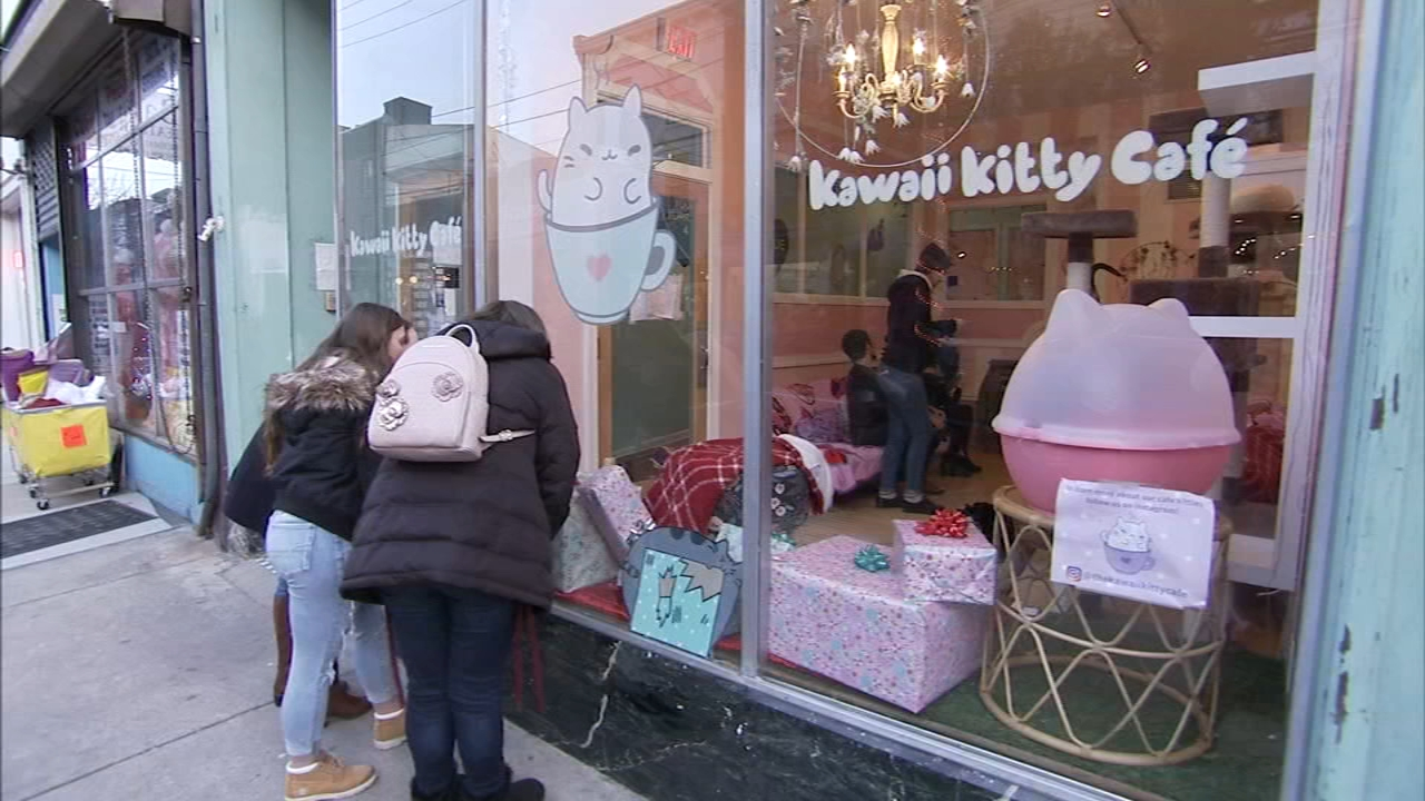Shelter Me: Kawaii Kitty Cafe. David Murphy reports during Action News at 9 a.m. on December 22, 2018.