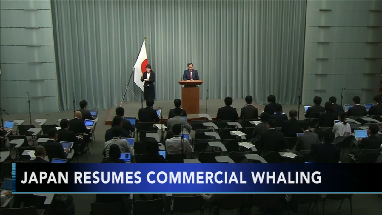 Japan resumes commercial whaling. Monica Malpass reports during Action News at 5:30 p.m. on December 26, 2018.