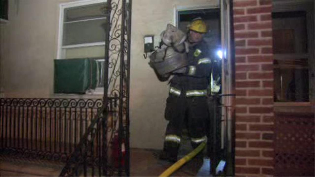 Fire forces residents from home in West Philly