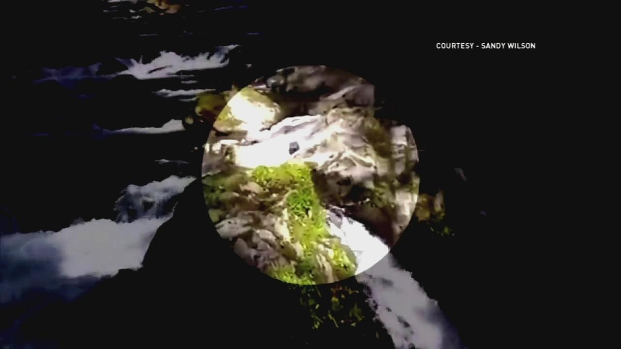 VIDEO: Man survives 70 foot plunge