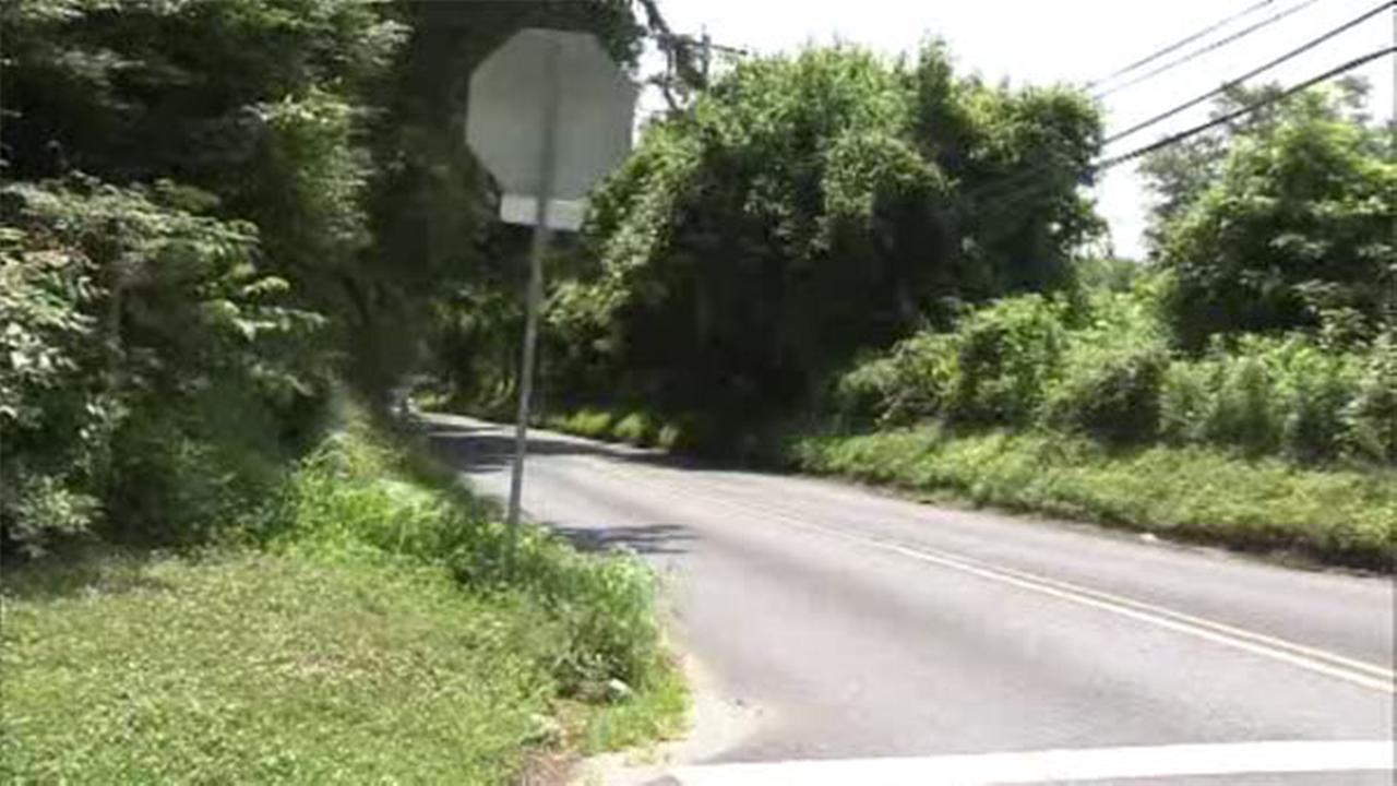 Police search for Hockessin, Del. flasher