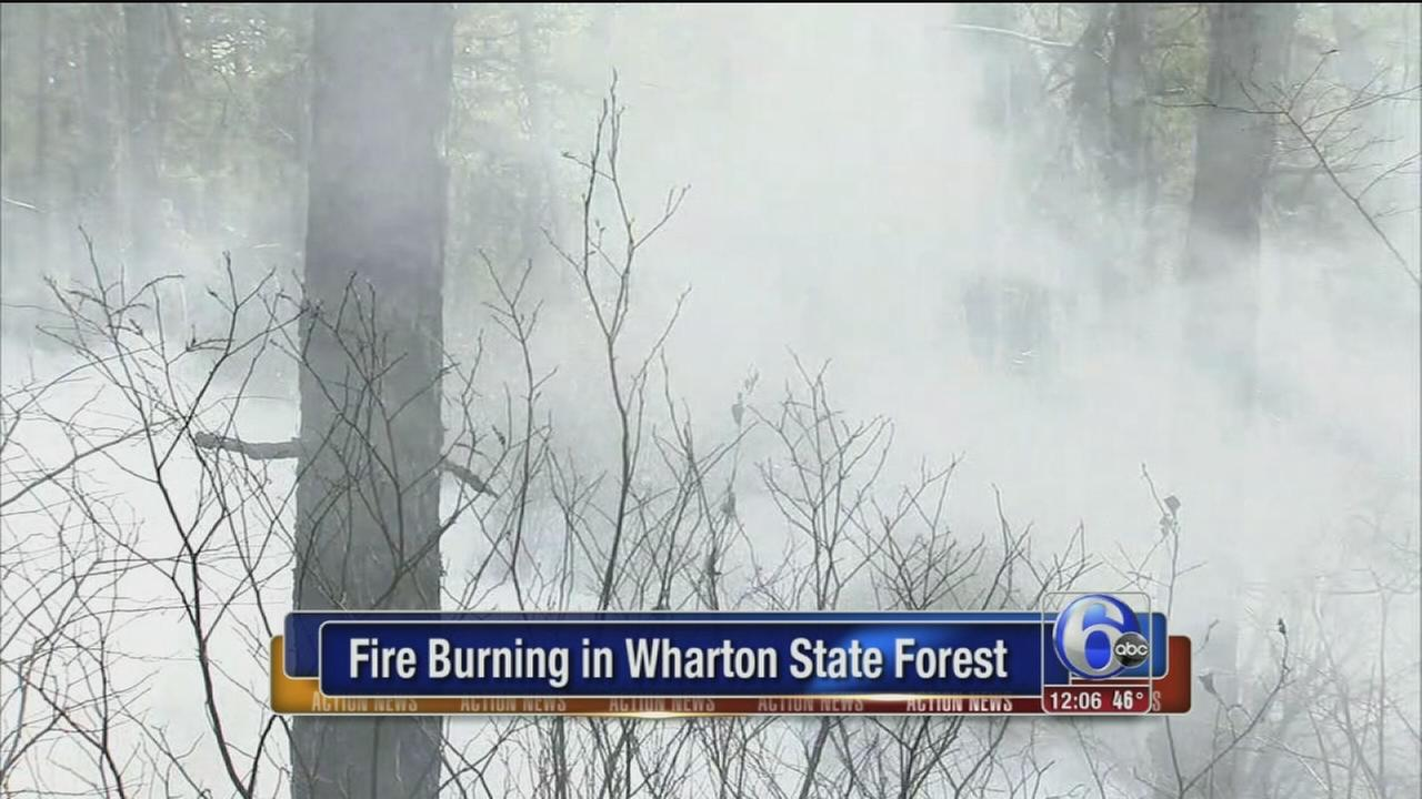 VIDEO: Fire crews battle forest fire in Camden County