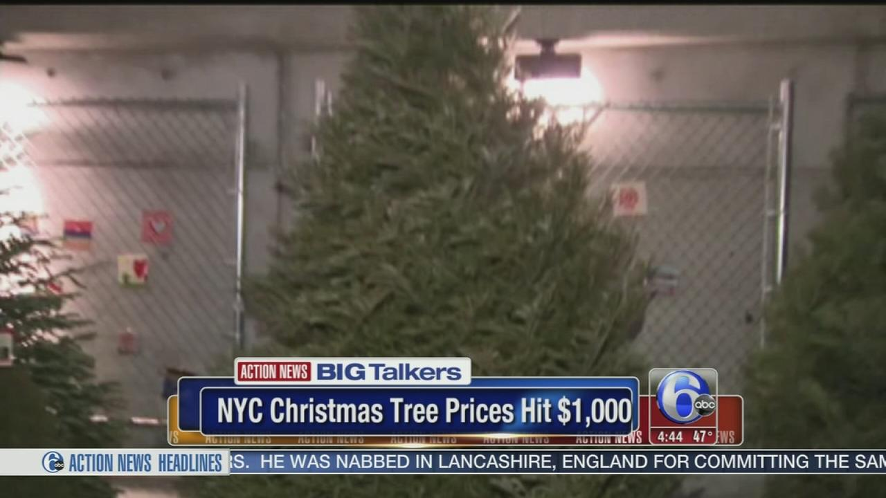 VIDEO: Christmas tree prices in NYC hit $1000