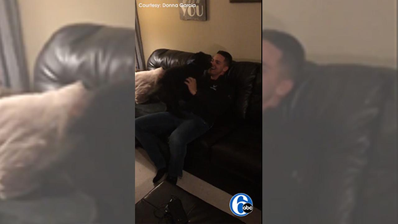 Dog senses owner is back home from Air Force