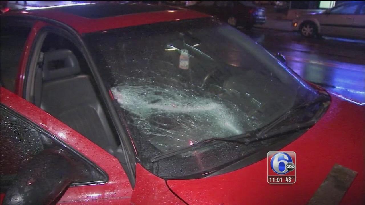 Metal debris crashes onto car, injures dog on I-676