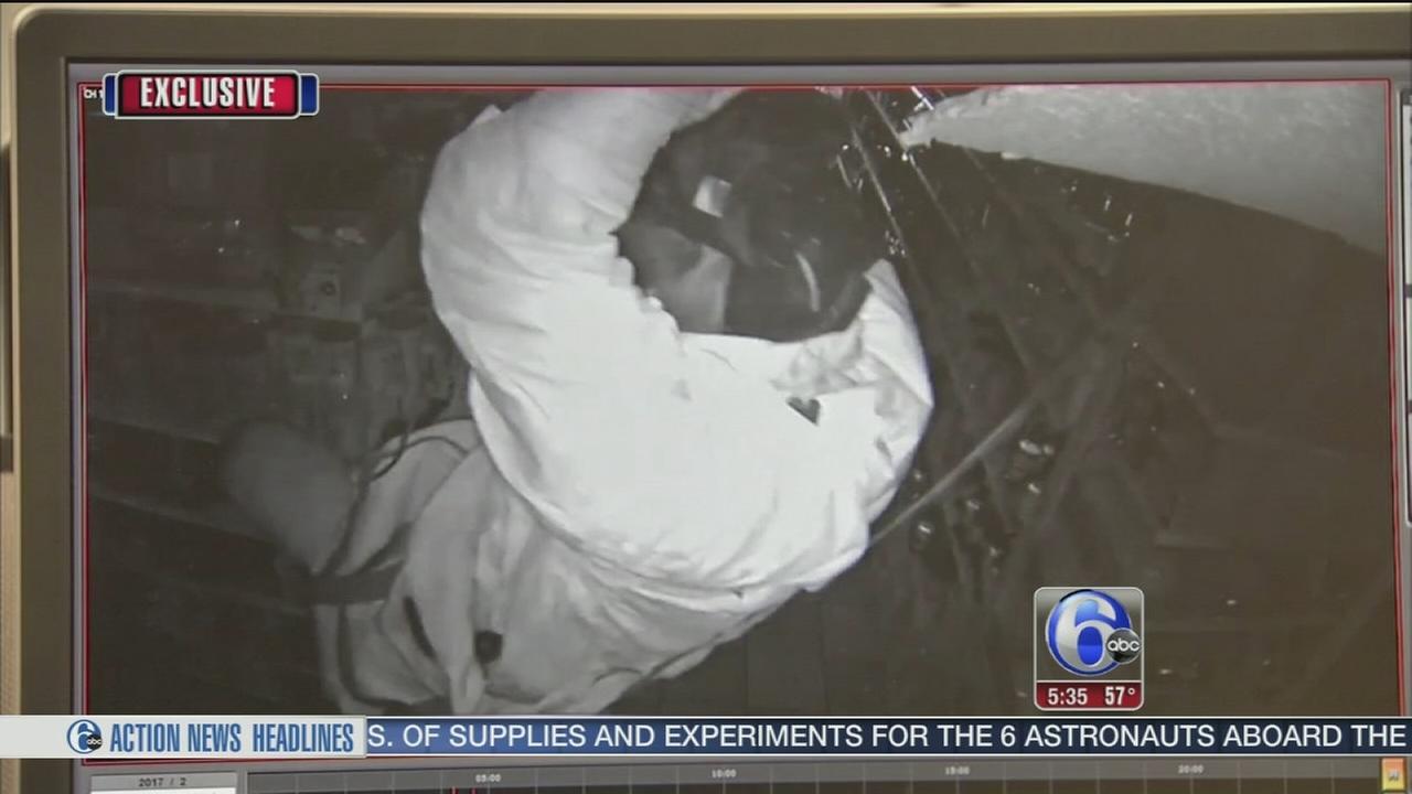Video shows burglar rappelling into Montco market