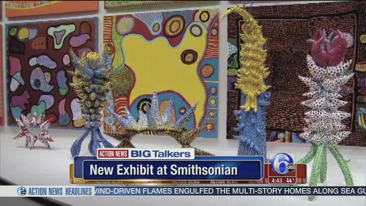 New Smithsonian exhibit makes guests part of the art