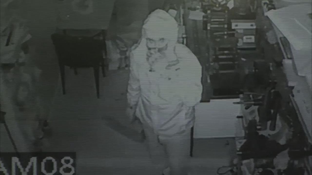 Surveillance video of Philly jewelry store heist