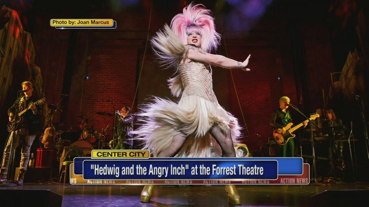 Talking Hedwig and the Angry Inch