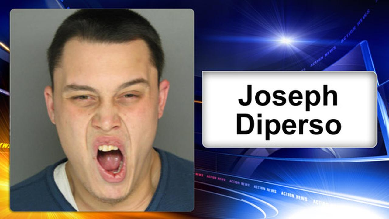 Police: Home Depot thief punched officer, fled on hood of car