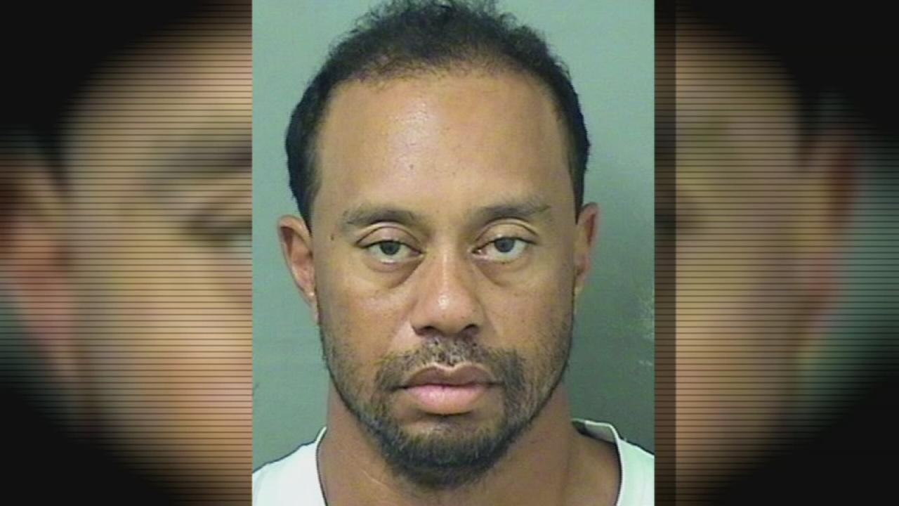 Police: Tiger Woods had 4 meds in system at time of DUI arrest