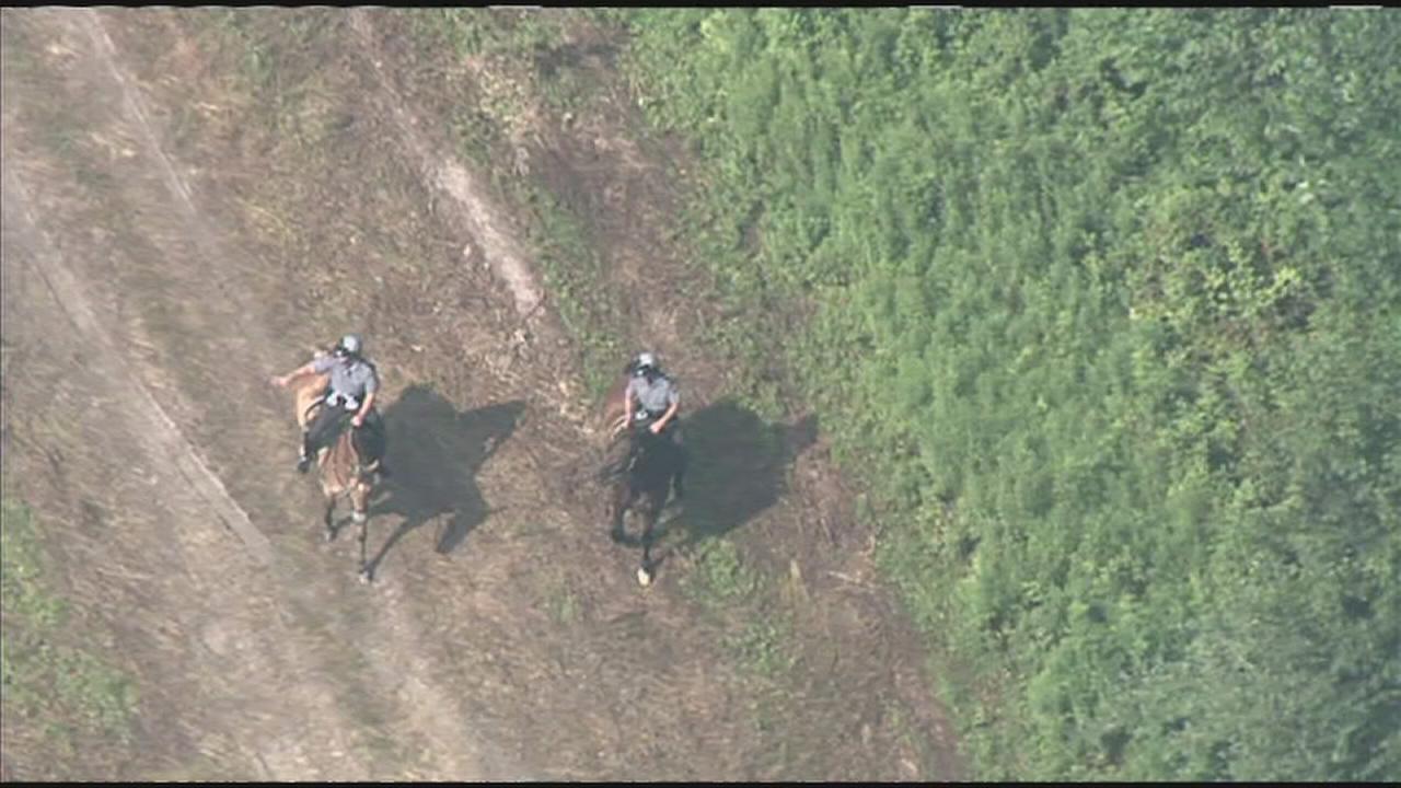 Police return to DiNardo property in Bucks County